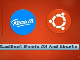 dualboot remix os